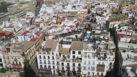 Views from the Giralda