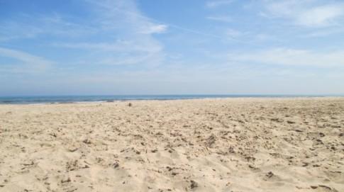Beautiful Campsite Beach