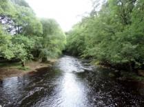 River Arkle Beck