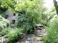 Trevethy Mill Ruins
