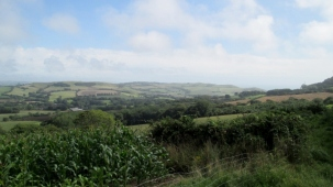 View from Ryall