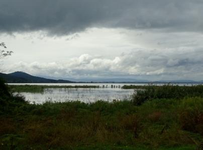 Lake Trasimeno