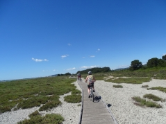 Cycling the Boardwalk around the Etang d'Ingril