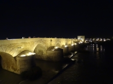 Puente Romano at Nght