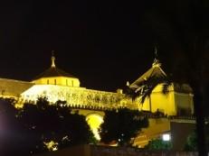 The Mezquita at Night