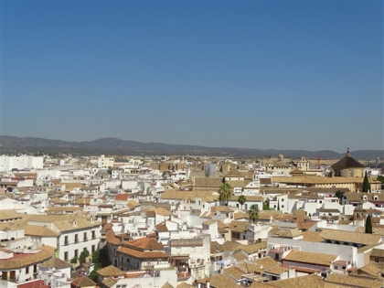 Cordoba from the Bell Tower