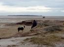 The beach from West Kirby towards Holylake