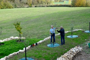 Tony & Peter pruning the fruit trees